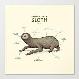 Anatomy of a Sloth Canvas Print