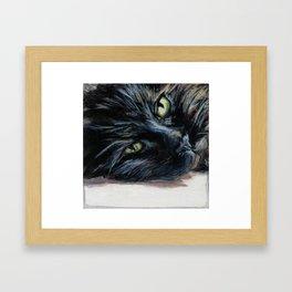 Sheila the Tortoiseshell Cat Resting Framed Art Print