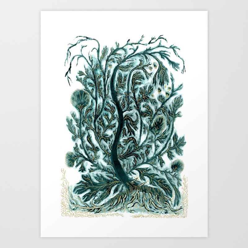 Artemisia Vulgaris Art Print