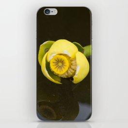Everglades Flower iPhone Skin