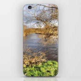 Winter am Fluss iPhone Skin