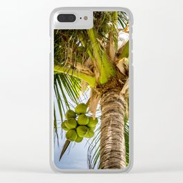 Sunny Palm Tree Clear iPhone Case