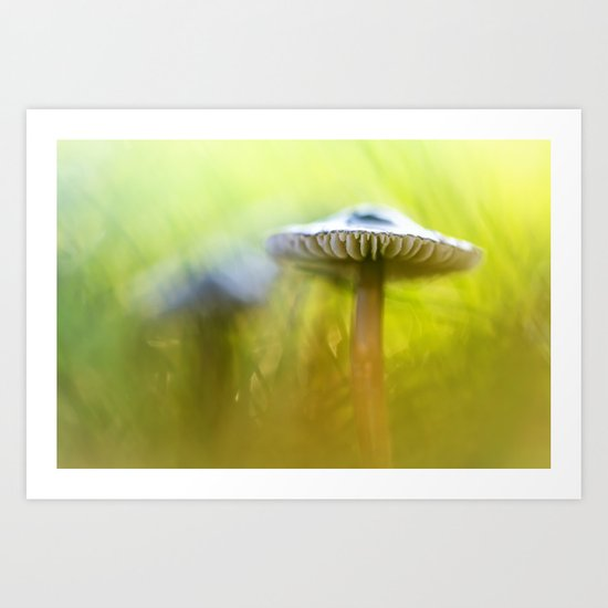 Mighty Marvelous Mushroom.... Art Print