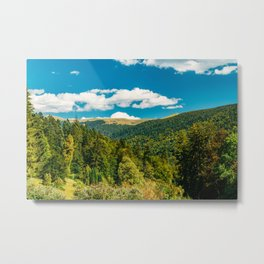 Carpathian Mountains Landscape, Summer Landscape, Transylvania Mountains, Forests Of Romania, Travel Metal Print