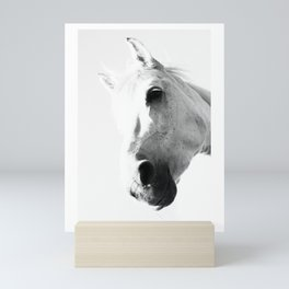 wild horse loves you Mini Art Print