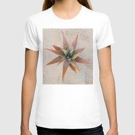 Mexico Succulent T-shirt