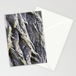 Wood and Bark photography pattern Stationery Cards