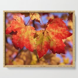 Autumn in Canada - Maple leafs Serving Tray