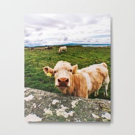 Irish Beauty  Metal Print