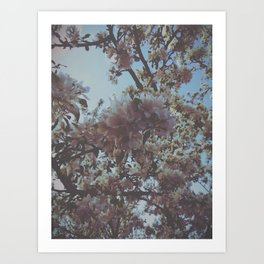 VSCO - Floral - Flowers  Art Print