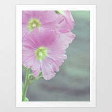 Hollyhock Art Print