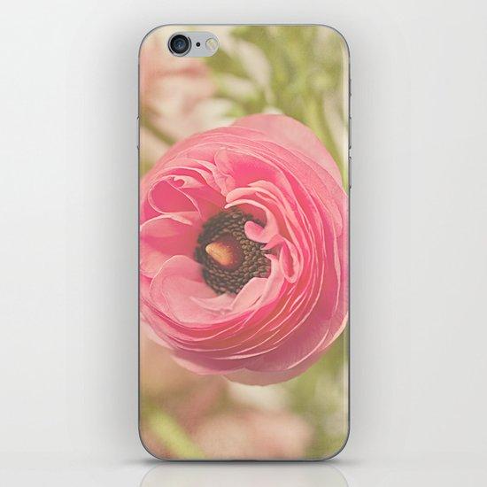 The Pretty Pink Ranunculus iPhone & iPod Skin