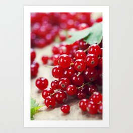 ripe red currant berries close up shot Art Print
