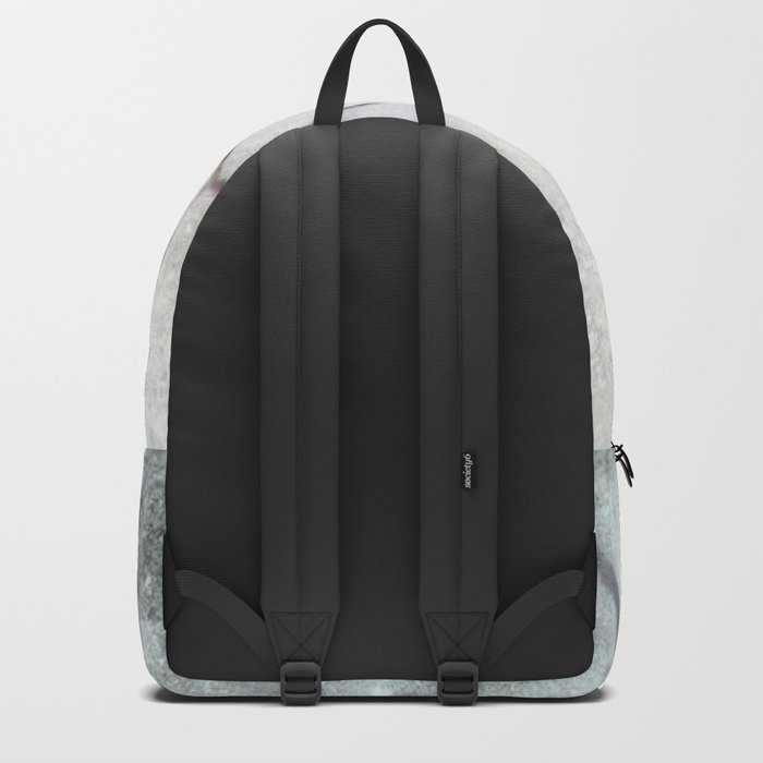 Winter Backpack
