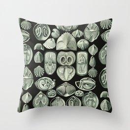 Ernst Haeckel - Spirobranchia Throw Pillow