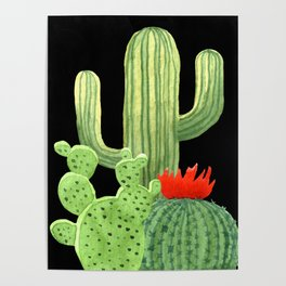 Perfect Cactus Bunch on Black Poster