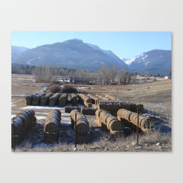 #406 bitterroot montana turds Canvas Print