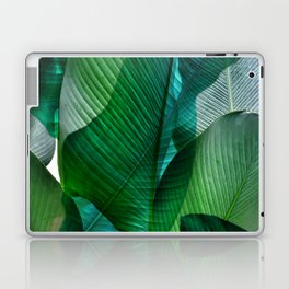 Palm leaf jungle Bali banana palm frond greens Laptop & iPad Skin