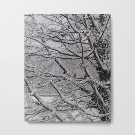 Unexpected Snow Metal Print