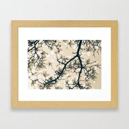 Magnolie beige Framed Art Print