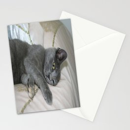Grey Kitten Relaxed On A Bed  Stationery Cards