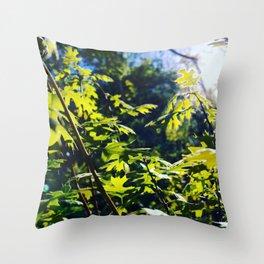 sunshine through leaves Throw Pillow