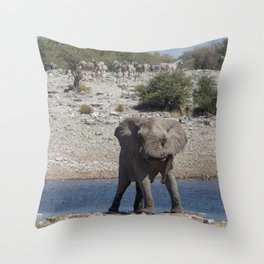 Animal Kingdom 3 Throw Pillow