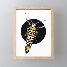 Ailanthus Webworm Moth (Atteva aurea) | BUGSPOTTING SERIES Framed Mini Art Print