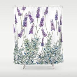 Lavender, Illustration Shower Curtain