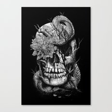 Snake and Skull Canvas Print