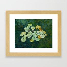 Tranquil lily pond Framed Art Print