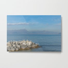 Seagulls on pebbles by the lake under a blue sky Metal Print
