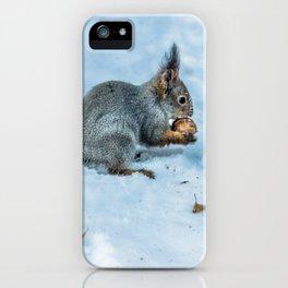 Tasty nut iPhone Case