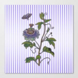 Merian: Passiflora Canvas Print