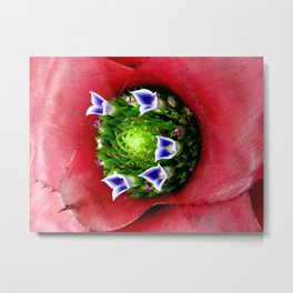 In the Center - Bromeliad Metal Print
