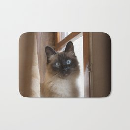 Adorable siamese cat with perfectly round blue eyes looking surprised, next to rustic wooden window. Bath Mat