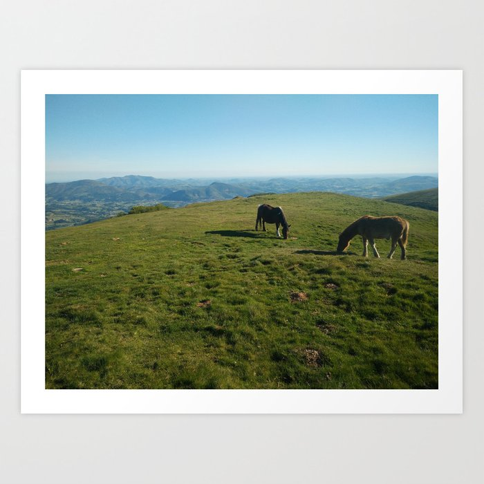 This Thing is mountain horses Art Print