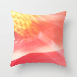 reflection of chihuly ii Throw Pillow