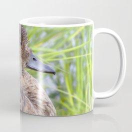 Watercolor Bird, Gadwall Duck 01, Lake Myvatn, Iceland Coffee Mug