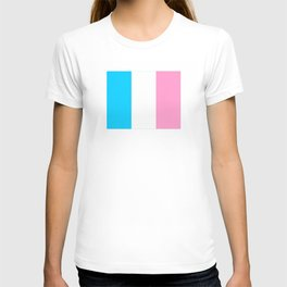 Parody of the french flag -France,Paris, pink, Marseille, lyon, Bordeaux,love, girly,fun,idyll,Nice T-shirt