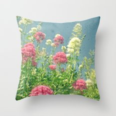 Raspberries and Cream Throw Pillow