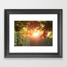 Magic Hour Framed Art Print