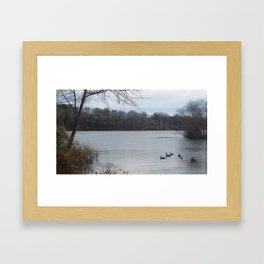 Fly or stay Framed Art Print