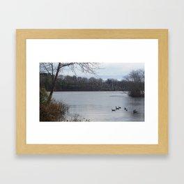 Fly or stay Framed Art Print