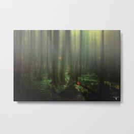 Mist over the moor Metal Print