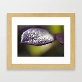 Morning Sparkle Framed Art Print