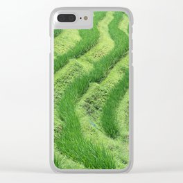 Longji Rice Terraces Clear iPhone Case