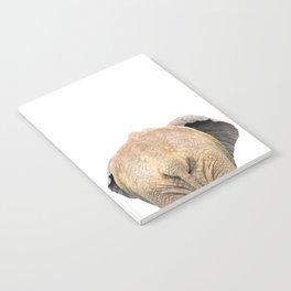 Elephant back Notebook