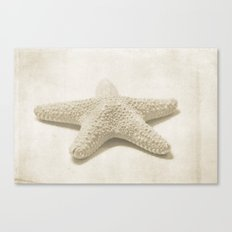 Natural Starfish Canvas Print