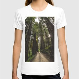 Redwoods Make Me Smile - Nature Photography T-shirt